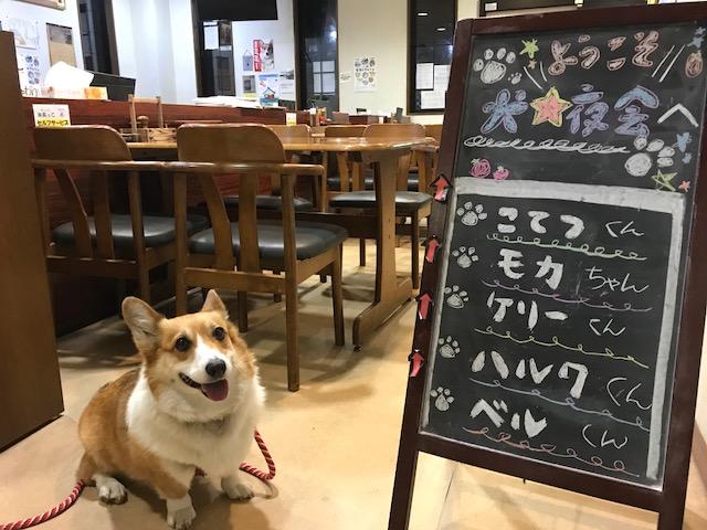 第5回 犬☆夜会ご報告①