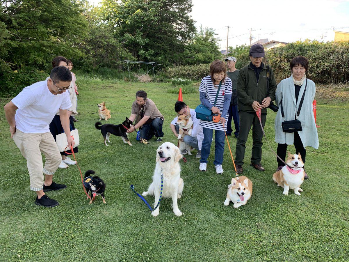 第6回 犬☆夜会の模様 【お外で学ぶ!遊ぶ!編】