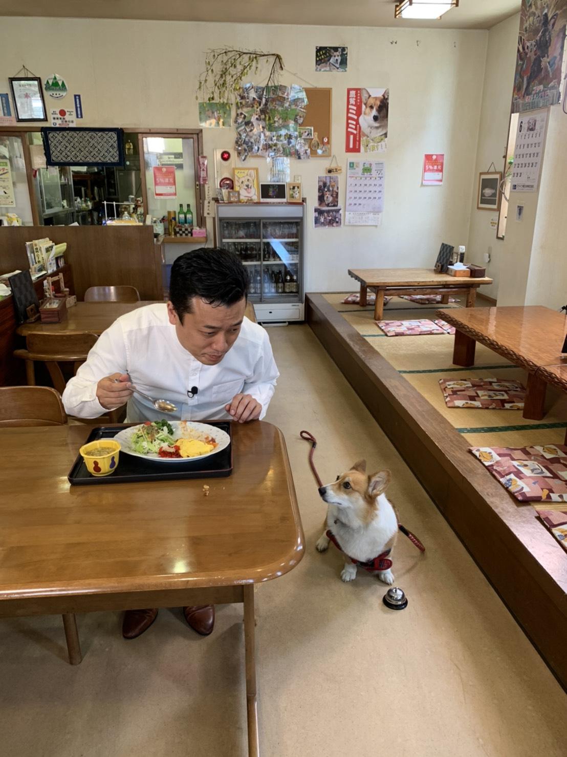 テレビ岩手 5きげんテレビで藤屋食堂が紹介されます!!                  ミミー🐶も出演しますよ✨✨